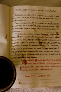 Escrita, café e sentimentos inventados